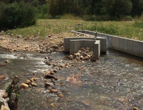 Meadow & South Ledge Fish Passage Demonstration Project