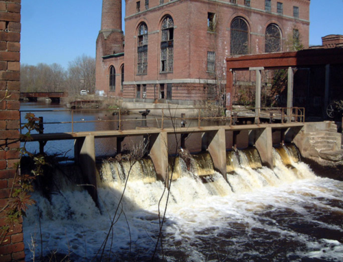 Neponset Fish Passage