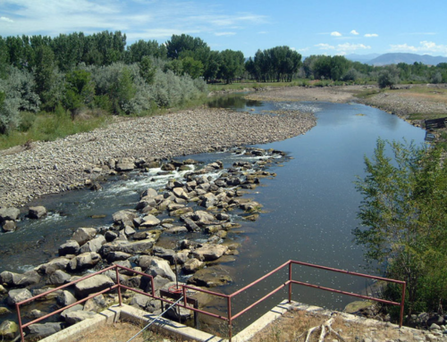 Smith-McKnight Irrigation Diversion